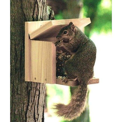 Audubon Cedar Squirrel Munch Box - BirdHousesAndBaths.com