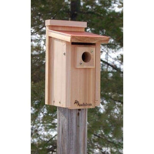 Audubon Coppertop Bluebird House - BirdHousesAndBaths.com
