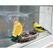 Audubon Mixed Treat Window Feeder - BirdHousesAndBaths.com