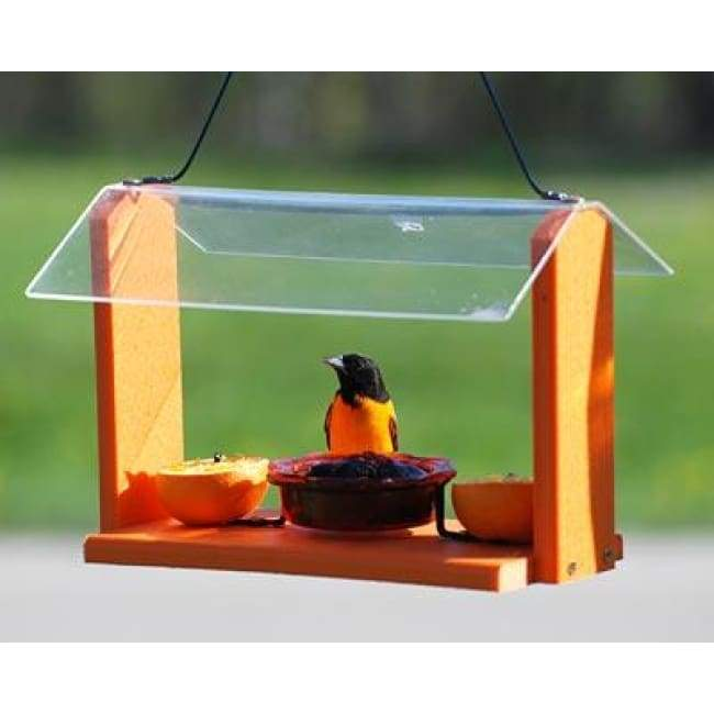 Audubon Recycled Plastic Oriole and Bluebird Feeder - BirdHousesAndBaths.com