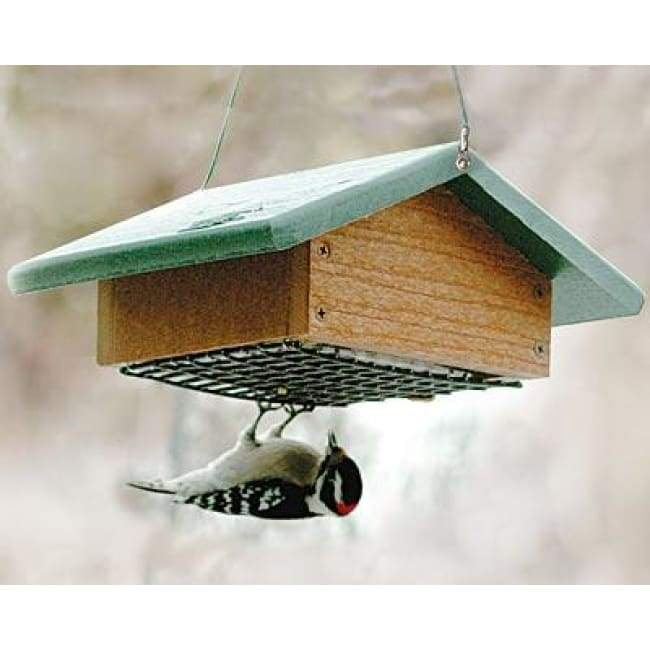 Audubon Recycled Plastic Upside Down Suet Feeder
