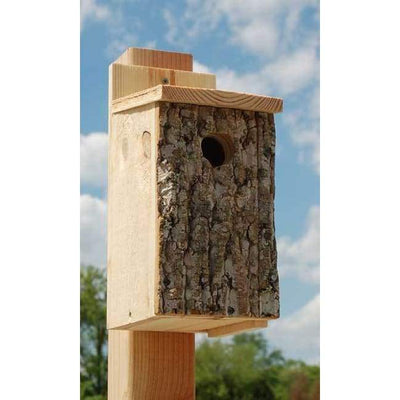 Bark Clad Bluebird House - BirdHousesAndBaths.com