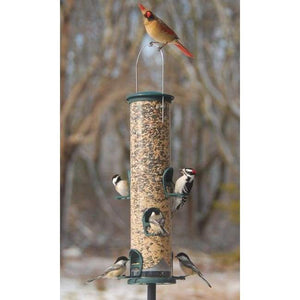 Big Tube Spruce Wild Bird Feeder - BirdHousesAndBaths.com