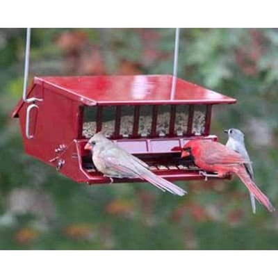 Bird's Choice Squirrel Proof Red Bird Feeder