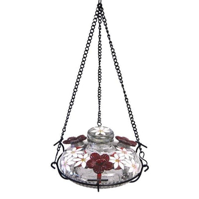 Bloom Botanica Hummingbird Feeder with Perch, Clear - BirdHousesAndBaths.com