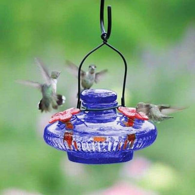Bloom Hummingbird Feeder, Blue - BirdHousesAndBaths.com