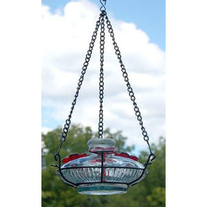 Bloom Hummingbird Feeder with Perch, Clear - BirdHousesAndBaths.com