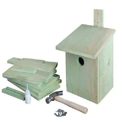 Build-It-Yourself Bird House Kit - BirdHousesAndBaths.com