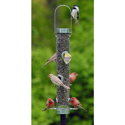 Classic Sunflower Bird Feeder - BirdHousesAndBaths.com