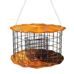 Copper Caged Double Suet Feeder - BirdHousesAndBaths.com
