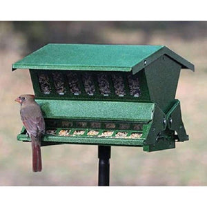 Double Sided Absolute II Bird Feeder with Pole & Hanger - BirdHousesAndBaths.com