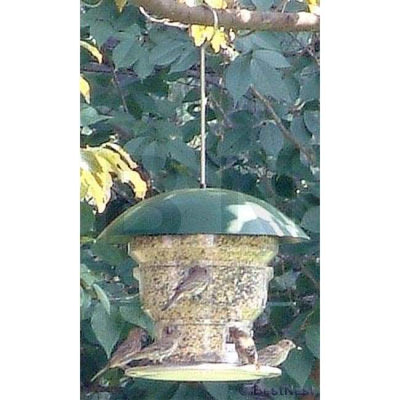 Feeding Frenzy High Capacity Bird Feeder - BirdHousesAndBaths.com