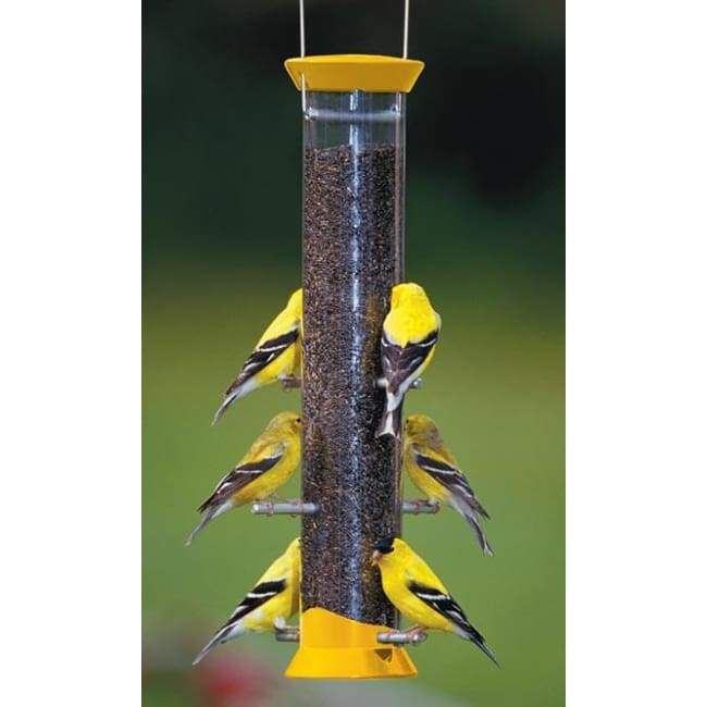 "New Generation 15"" Finch Flocker Bird Feeder, Yellow - BirdHousesAndBaths.com"