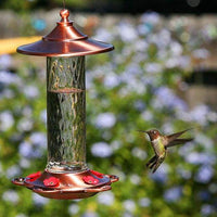 Glory Hummingbird Feeder - BirdHousesAndBaths.com