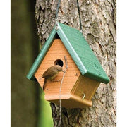 Going Green Hanging Wren House - BirdHousesAndBaths.com