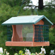 Going Green Premier Bird Feeder with Suet Cages - BirdHousesAndBaths.com