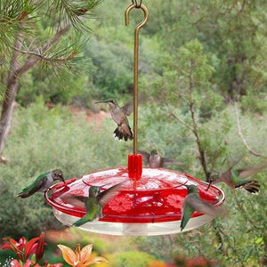 Happy Eight-2 Hummingbird Feeder - BirdHousesAndBaths.com