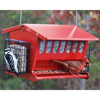 Seeds and More Double-Sided Bird Feeder