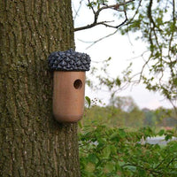 Wooden Acorn Bird House - BirdHousesAndBaths.com