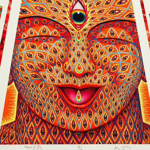 Tears of Joy by Alex Grey