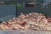 3 Gruesome Truths The Dog Food Industry Doesn't Want You To Know About: