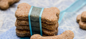 3 Of Our Easiest and Healthiest Homemade Dog Treats