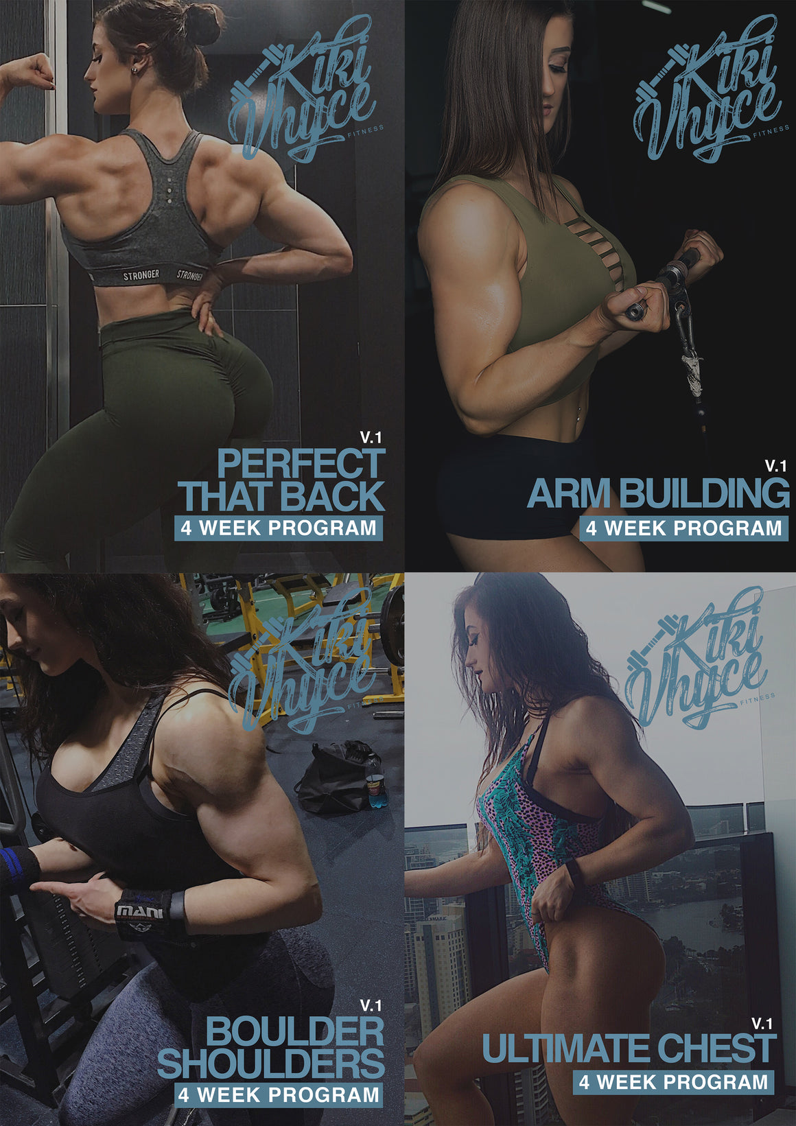 UPPER BODY TRAINING PROGRAM BUNDLE