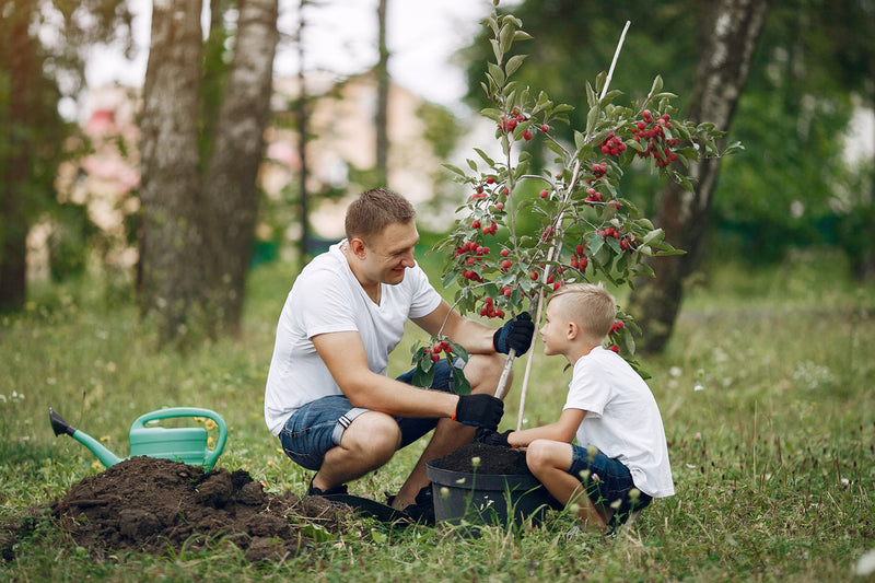Dad and son gardening