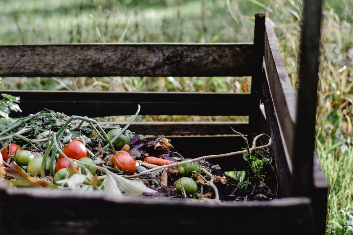 The Simplest Guide to Composting