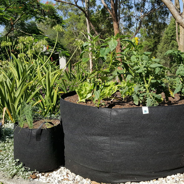 Will Using Grow Bags Make  Gardening Easier?