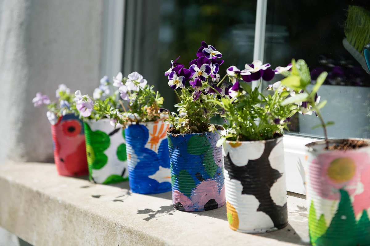 Plant using recycled can