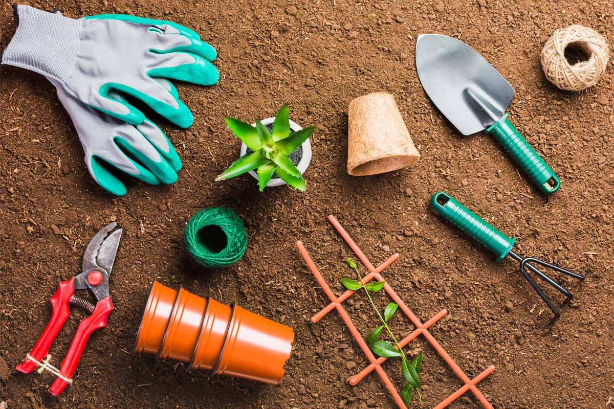 Best tools for gardening