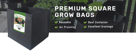 Ecogardener Premium Square Grow Bags