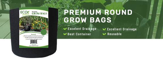 Buy Ecogardener Premium Growbags