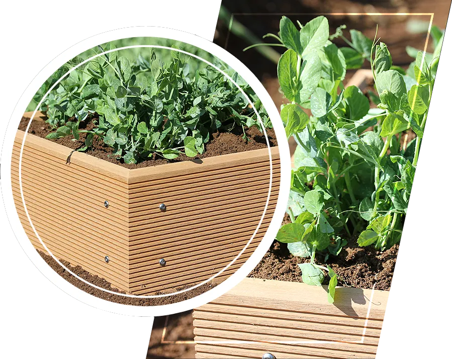 Ecogardener raised bed planter being planted with plants