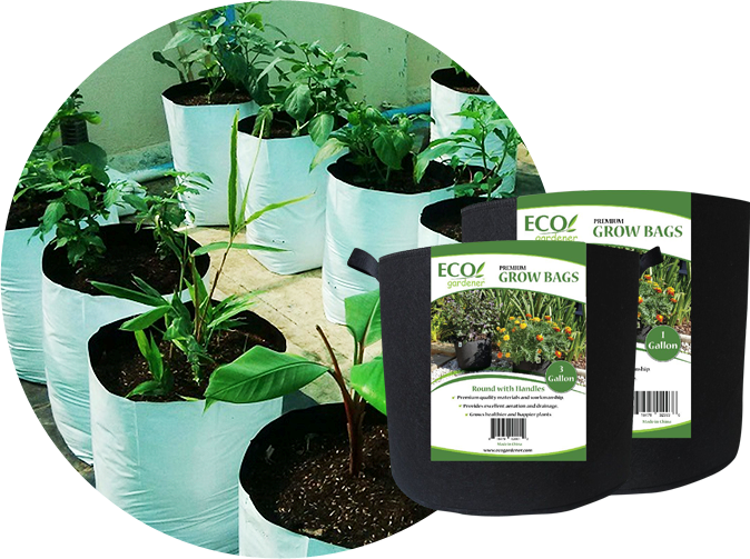 Plants on a grow bag