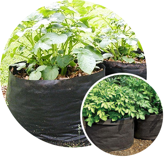 A potato grow bag
