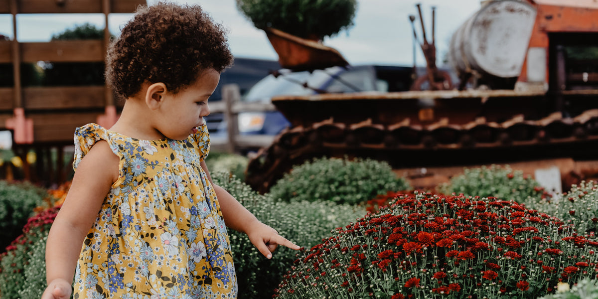 Kid touching plant in the garden