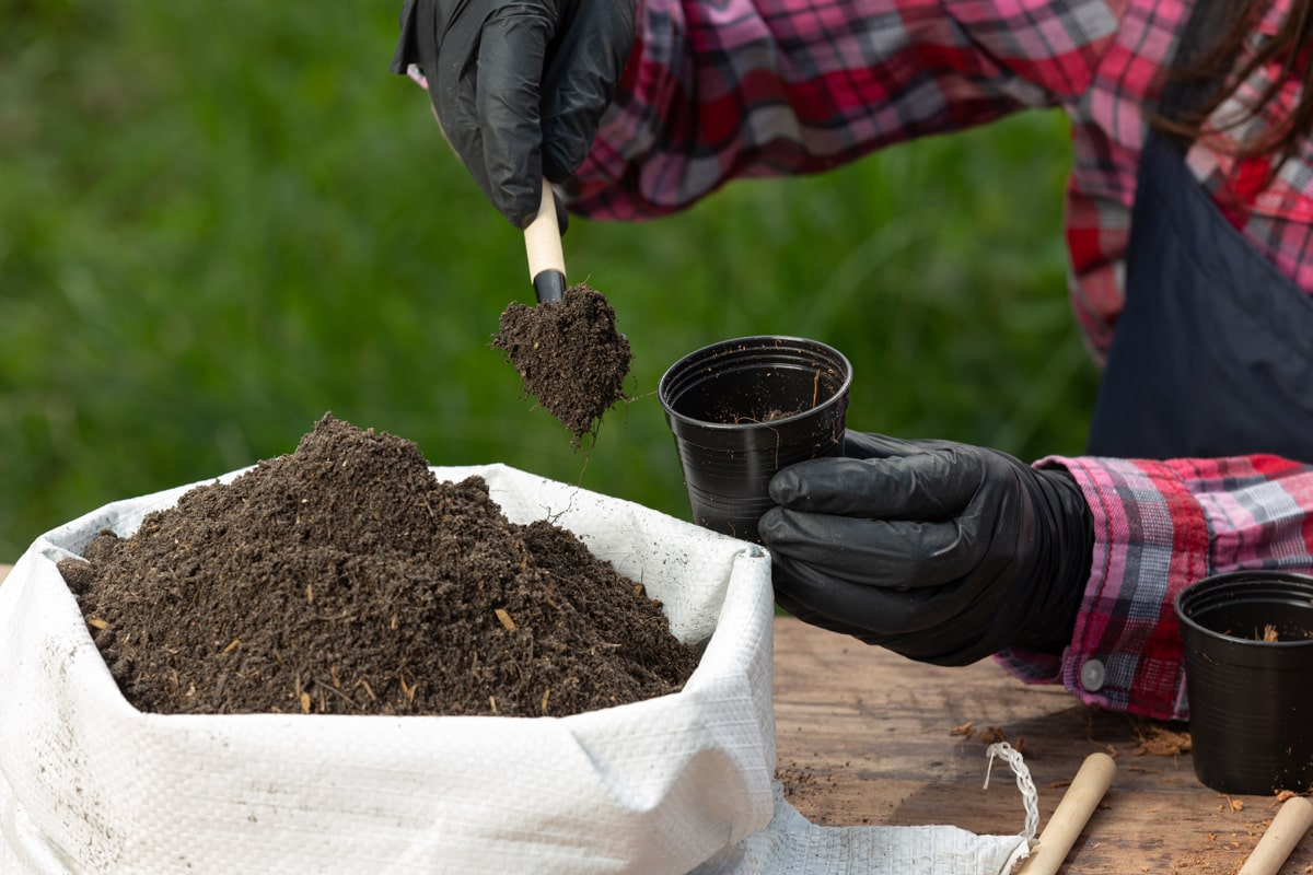 A person planting using compost