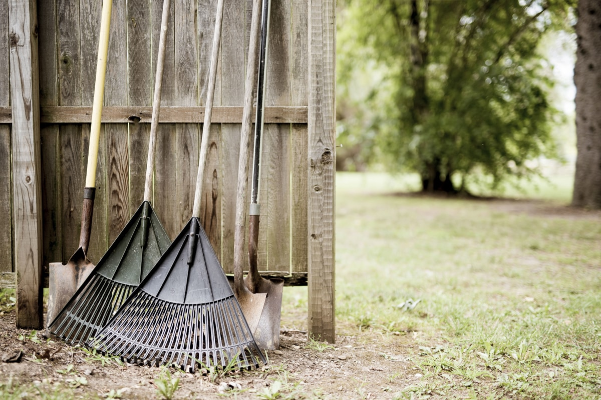 Wooden rakes and shovels for gardening
