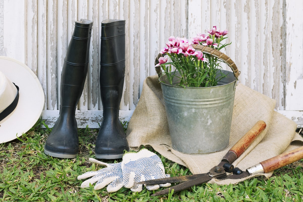 Right tools for gardening