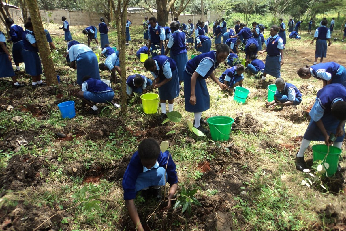Student's in a tree planting activity