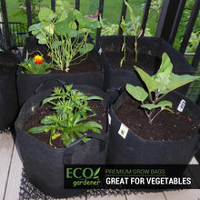 Ecogardener grow bags in the patio
