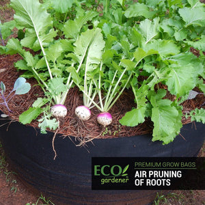 Ecogardener grow bags with vegetables and spices