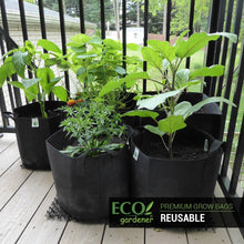 Ecogardener grow bags in the balcony