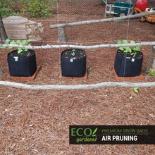 Ecogardener square grow bags with different kinds of plants