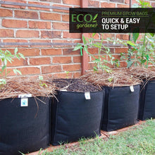 Ecogardener square grow bags with newly planted plants