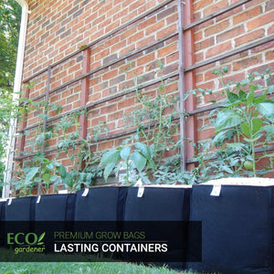 Tomato plants using ecogardener grow bags