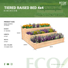 Tiered Raised Bed Infographics