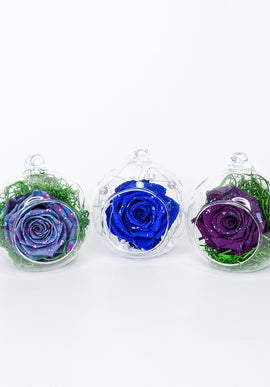 Glass Globe EternalBloom™ Rose
